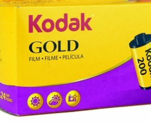 Kodak Gold ISO 200 – 135 - 35mm - Caffenol Lab - Brantford Photo Lab - Ontario - Canada